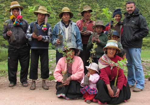 Distribution of saplings for reforestation in Labraco, Pitumarca, Peru