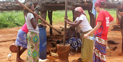 CULTURAL TOURISM IN ZIMBABWE DOWNLOAD