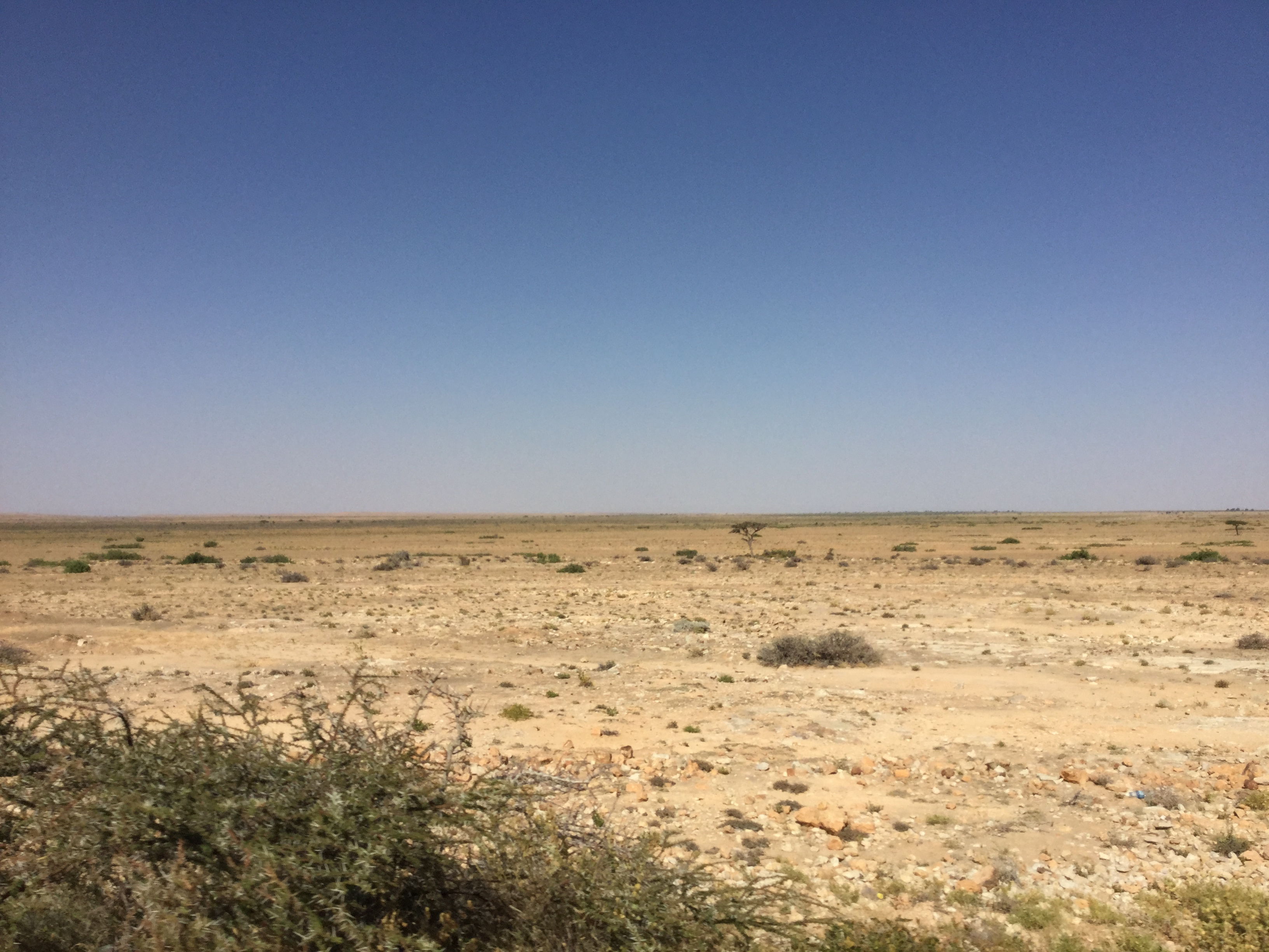 Barren landscape in Somaliland on the road to Laas Caanood