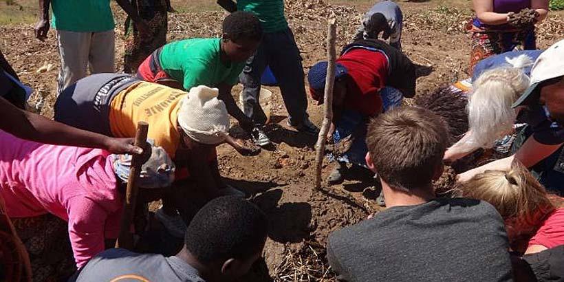 Promoting manure as a fertiliser