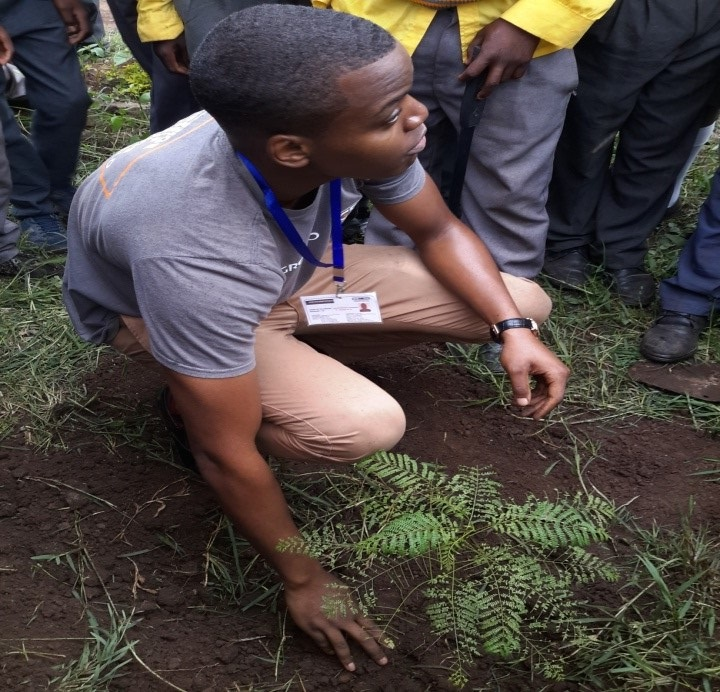 A young man plants a tree