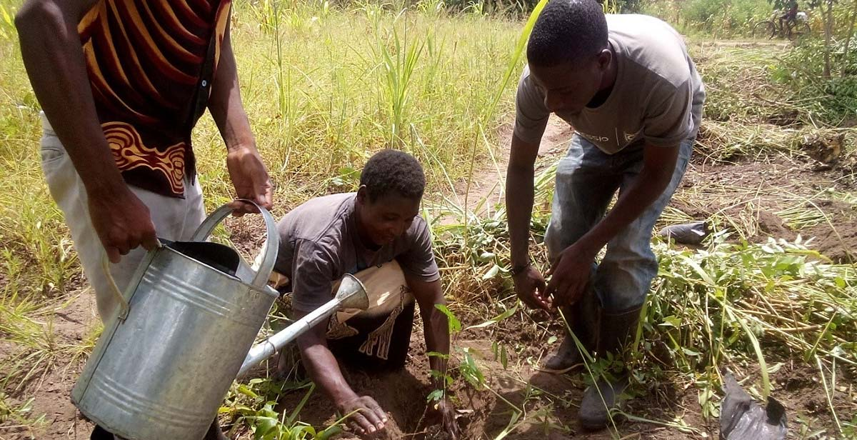 Village Headwoman Mwenyekasi planting a tree