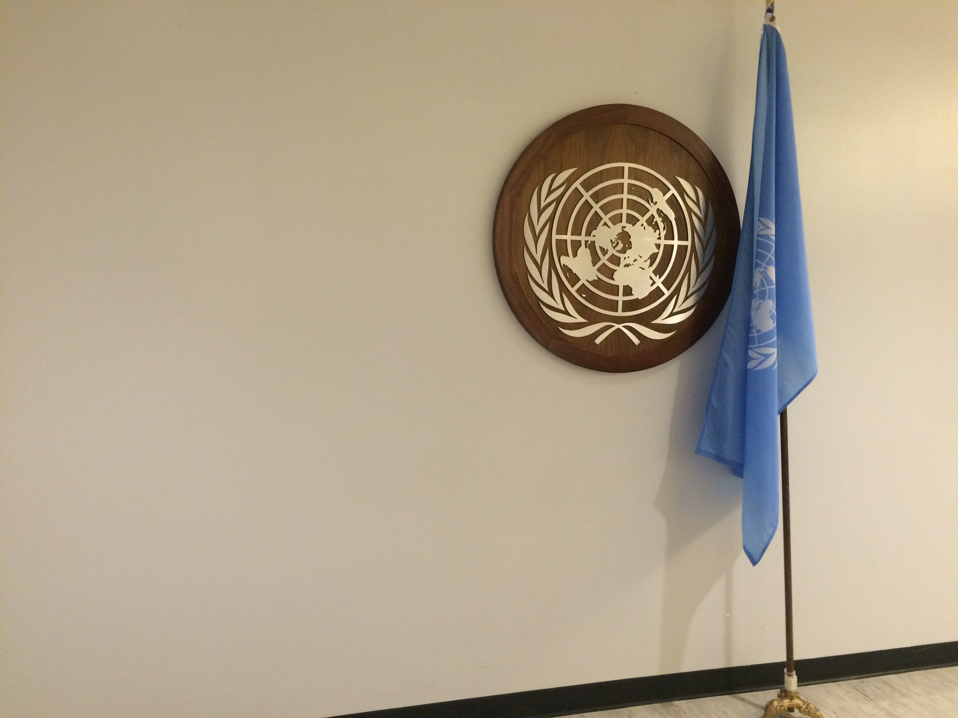UN flag at CSW 60
