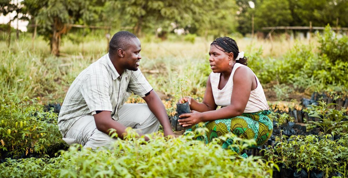 Development Worker Malawi, 2009