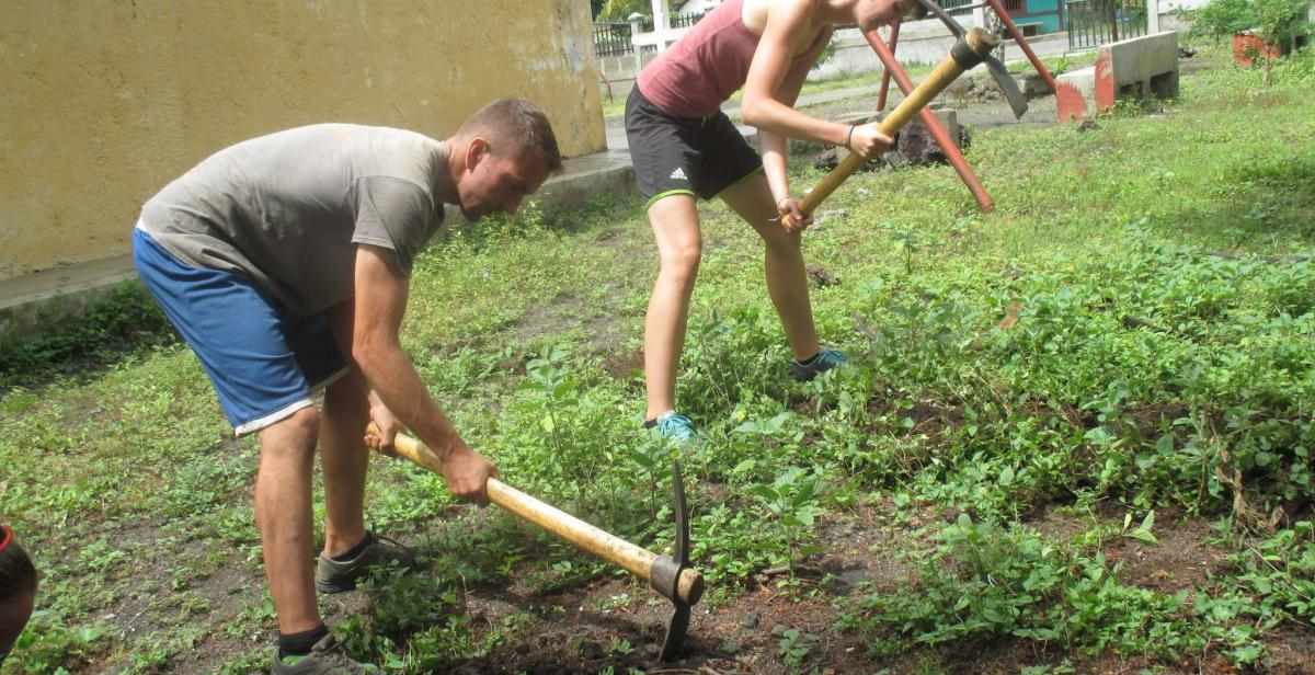 Taking care of a vegetable garden