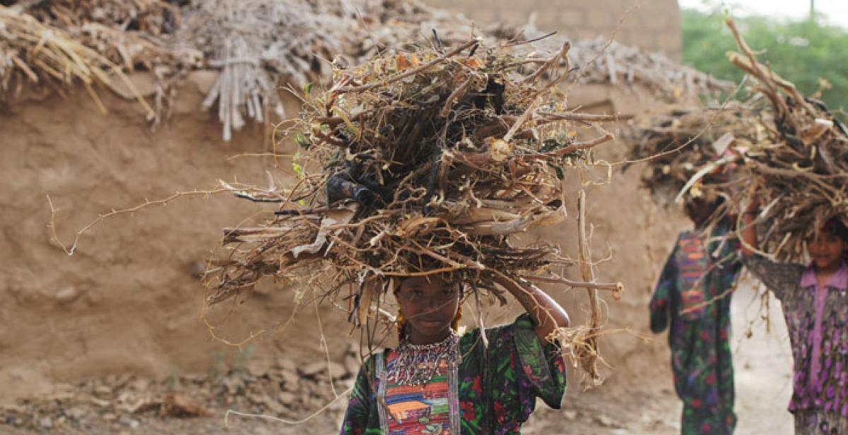 A young girl carries wood in the Zabid region of Yemen, where Progressio worked before the conflict