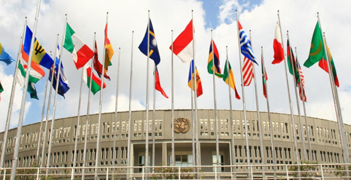 UNCC flags
