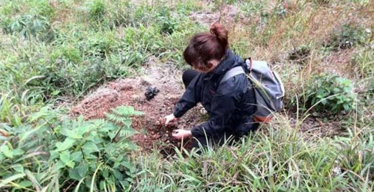 Amelia planting new trees to help combat soil erosion