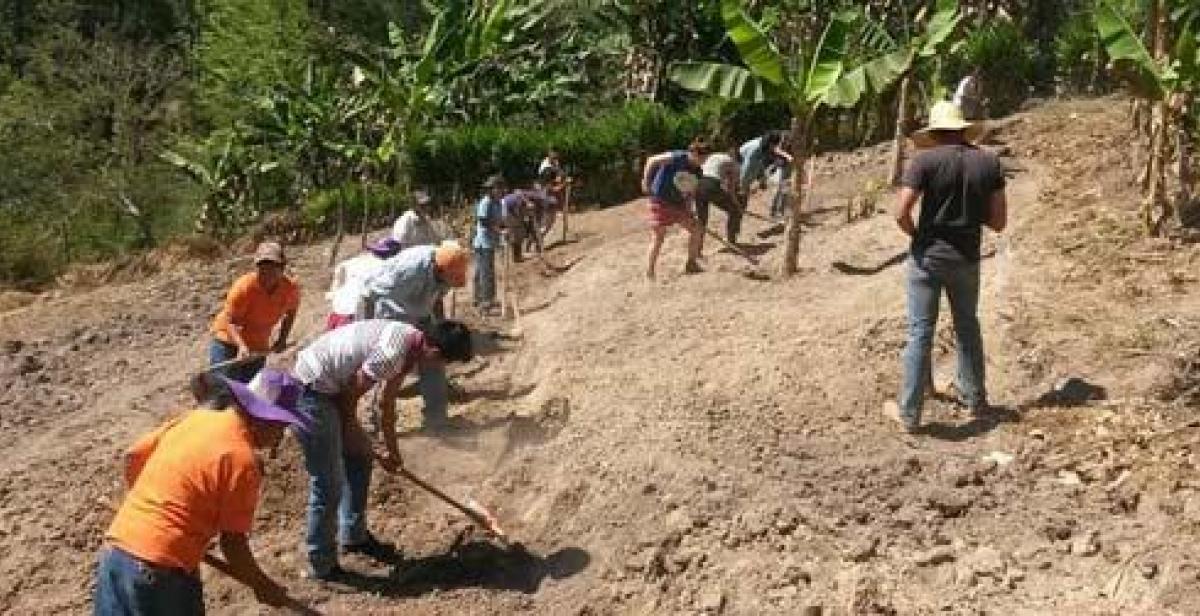 Volunteers working on hillside farm in Honduras