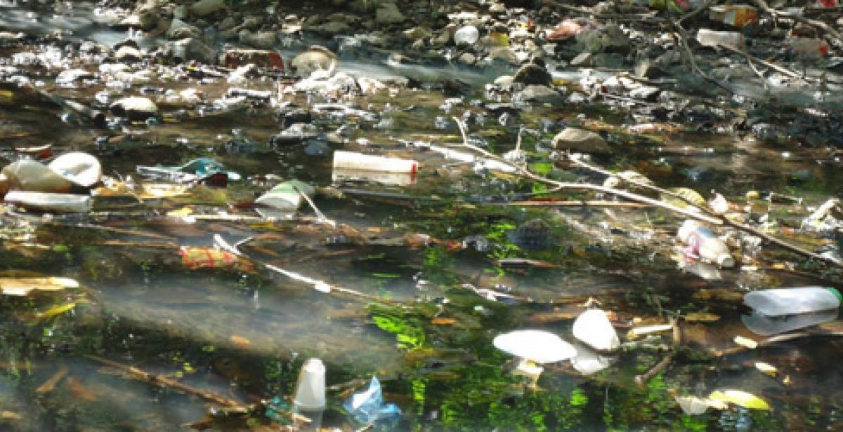 Progressio ICS, El Salvador, Litter, Santa Marta, Environment