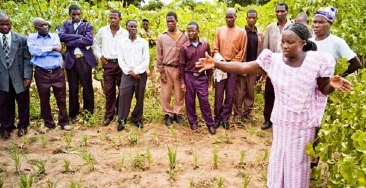 Farmer Betty Mkusa teaches others about organic farming in Malawi