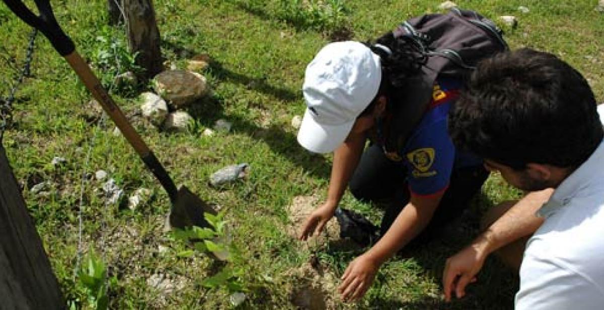 Volunteers working on reforestation in Nicaragua