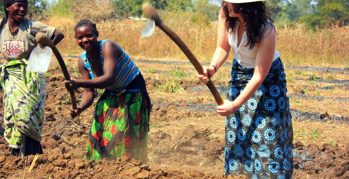 Women farming in Malawi