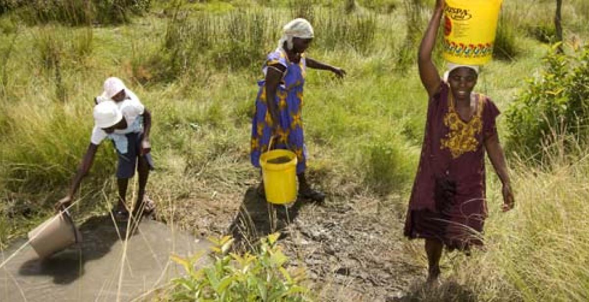 Women farmers in Wedza, Zimbabwe