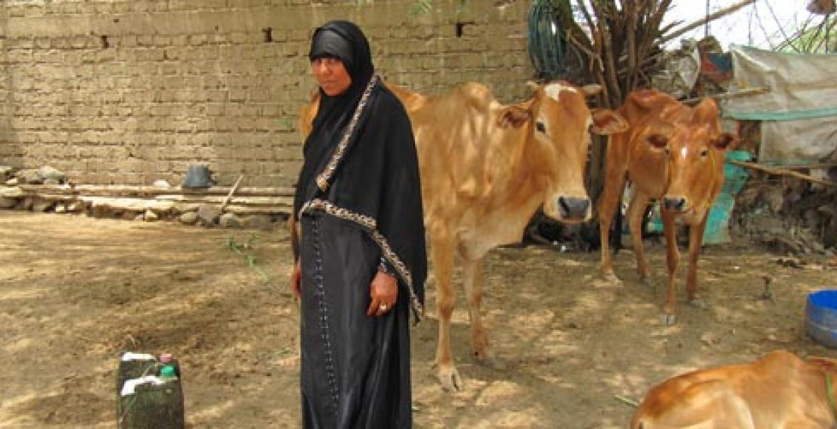 Aisha Ayash