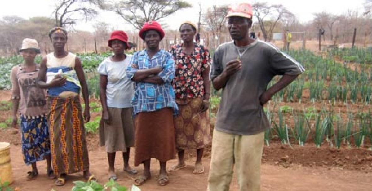 Farmers in community food garden in Zimbabwe