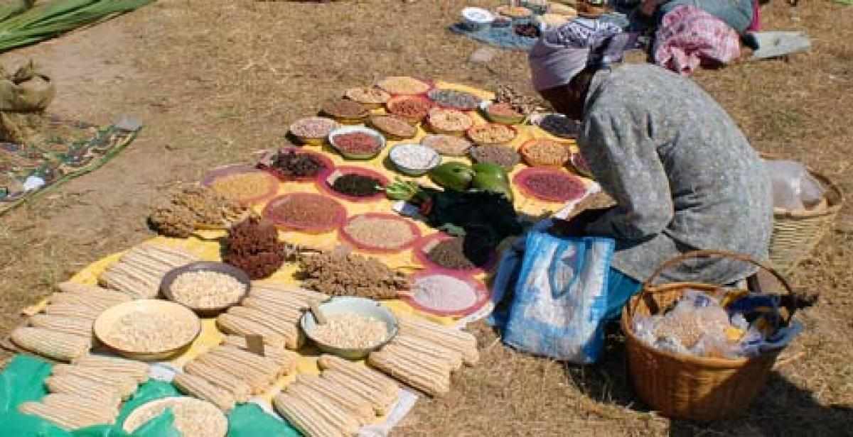 A woman selling produce at Chigondo market, Zimbabwe