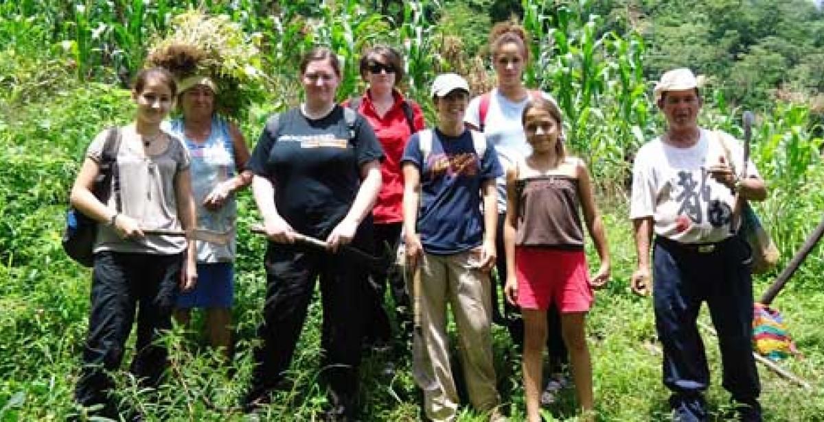Empower volunteers on the cornfield