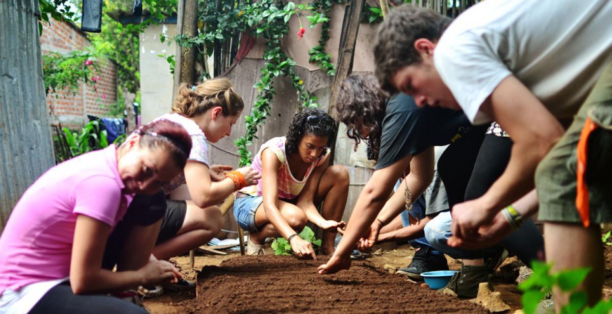 Volunteers involved in gardening project