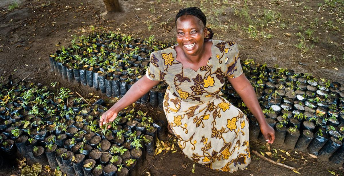 Farmer Betty Mkusa with seedlings