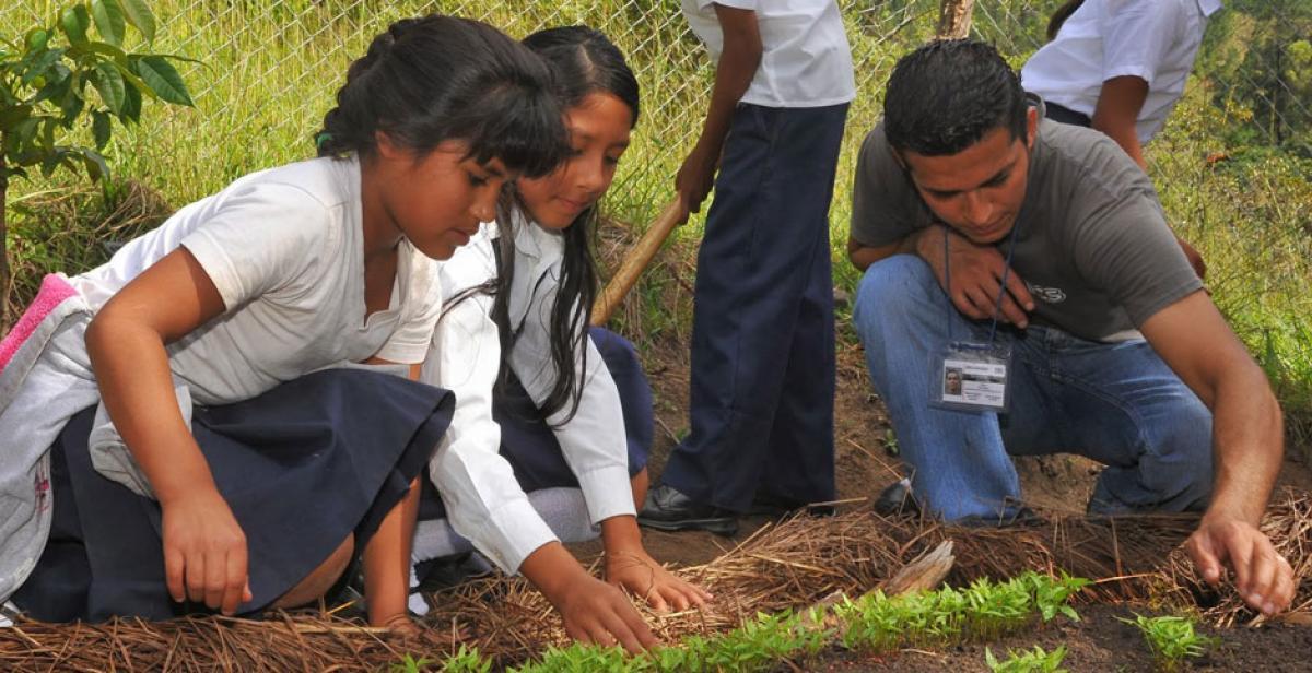 Volunteers planting in Dipilto, Nicaragua