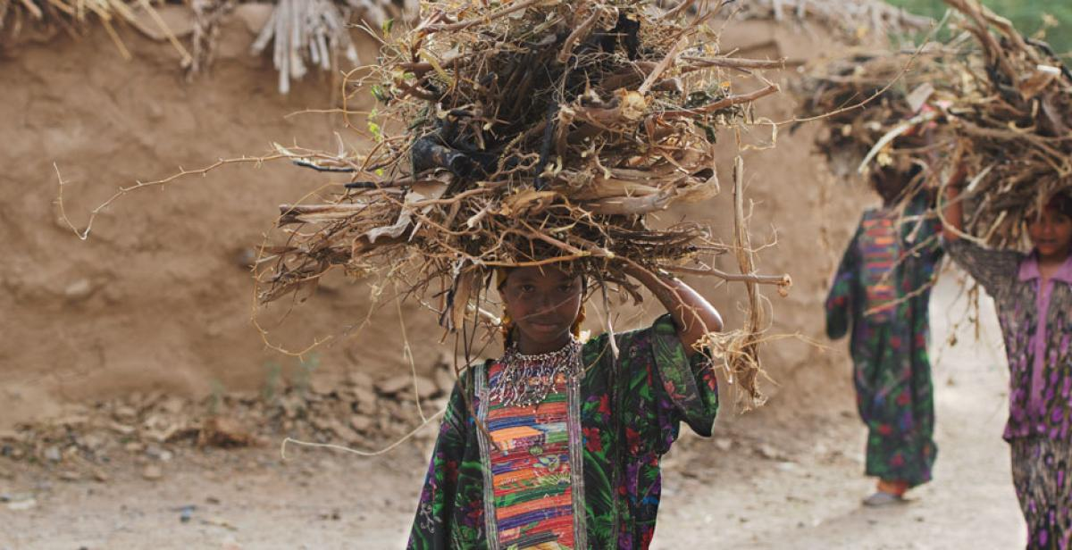 Young girls carrying stacks of wood on their heads