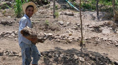 Luciano working in his farm