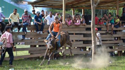 Bull Riding in Nicaragua