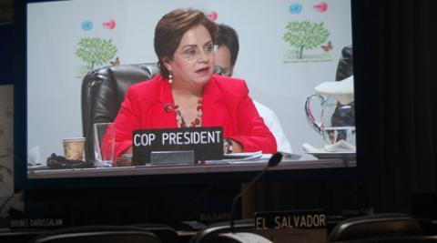 Patricia Espinosa Cantellano, President of the UN climate talks