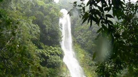 Vine Falls, Honduras.