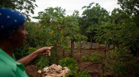 Farmer Amparo Jimenez showing her food garden