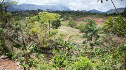 Haiti landscape