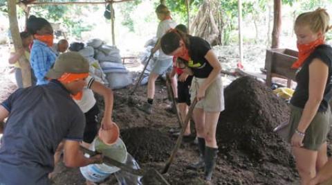 Volunteers digging in greenhouse
