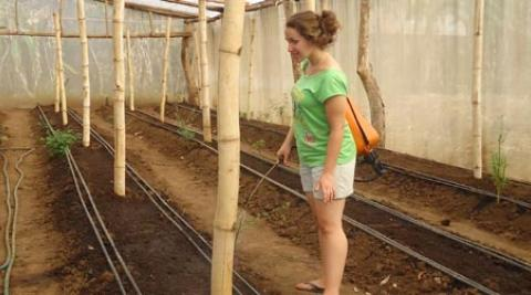 Laura Packer spraying insecticide in greenhouse