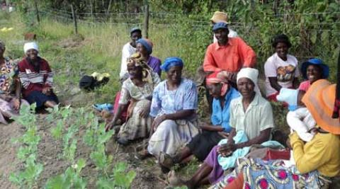 Farmers in Zimbabwe
