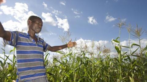 A farmer in Zimbabwe