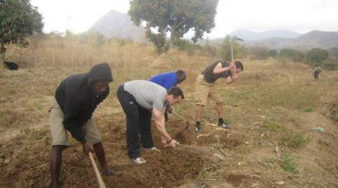 Volunteers ploughing a field