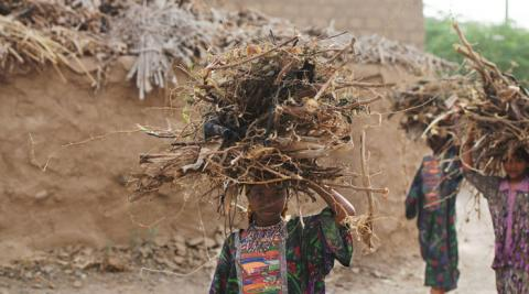 A young girl collects wood in Zabid, Yemen, where Progressio worked before the conflict erupted