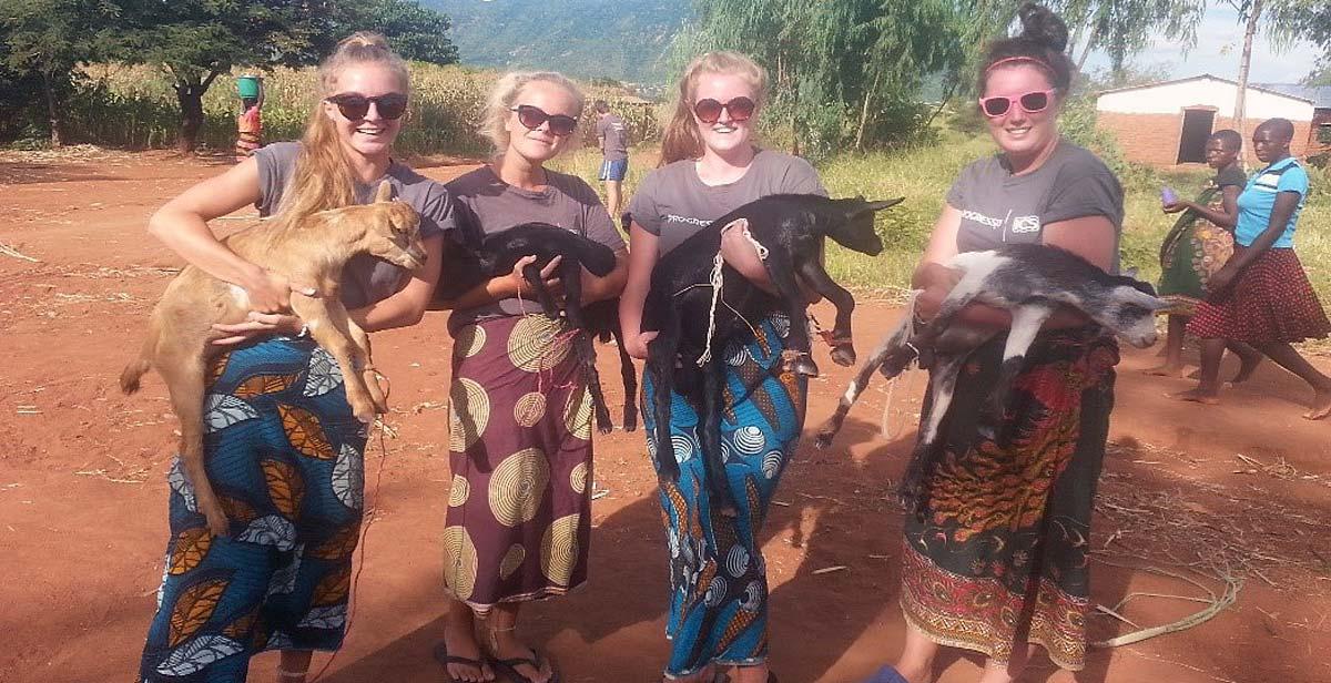 Girls, goats and chitenjes