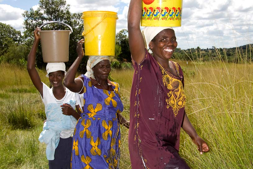 Women farmers carrying buckets of water for their crops in Zimbabwe