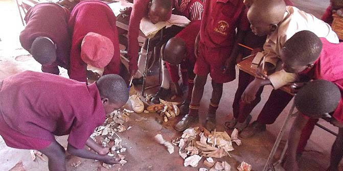 Primary school students selecting rubbish